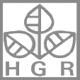 logo_hgr-grau2